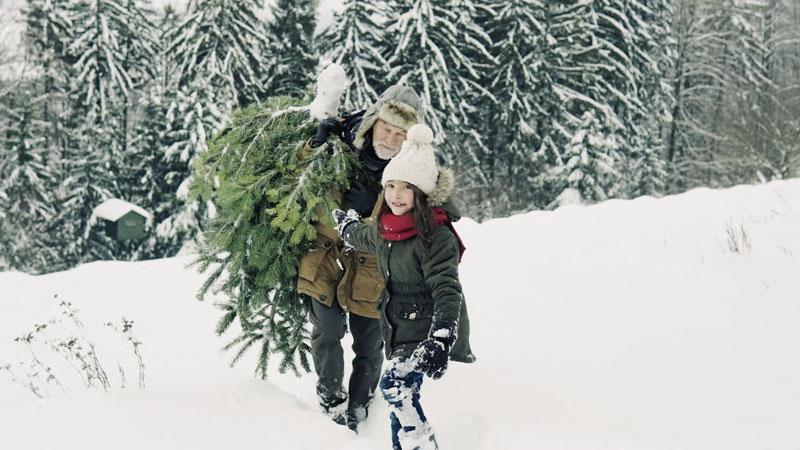 Be Love this Holiday Season